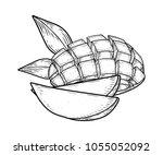 mango fruit vector set....   Shutterstock .eps vector #1055052092