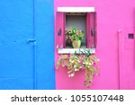Window With Flower Display In...