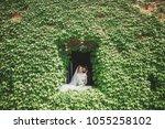 lovely happy wedding couple ... | Shutterstock . vector #1055258102