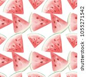 seamless pattern with... | Shutterstock . vector #1055271542