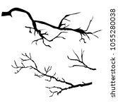 set of tree branch silhouettes  ...   Shutterstock .eps vector #1055280038