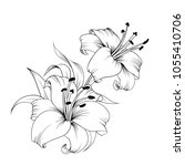 white lily isolated on a white... | Shutterstock .eps vector #1055410706