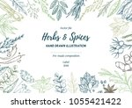 hand drawn vector illustration. ... | Shutterstock .eps vector #1055421422