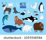arctic animals. cute animal set ...   Shutterstock .eps vector #1055548586
