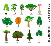 vector trees. forest tree set... | Shutterstock .eps vector #1055548598
