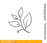 laurel branch. editable line...   Shutterstock .eps vector #1055596346