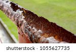 rustic pipe rail | Shutterstock . vector #1055627735