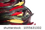rooster feathers. carnival.... | Shutterstock . vector #1055631332