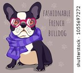 fashionable cute french bulldog ... | Shutterstock .eps vector #1055697272