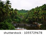 beautiful natural green scenery ... | Shutterstock . vector #1055729678