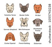 dogs breeds color icons set.... | Shutterstock .eps vector #1055743238