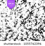 vector black and white hand... | Shutterstock .eps vector #1055762396