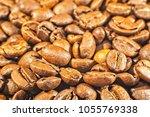 coffea arabica roasted beans... | Shutterstock . vector #1055769338