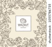background with walnut  nuts... | Shutterstock .eps vector #1055786735