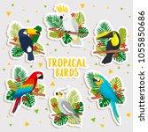 set of cute cartoon tropical... | Shutterstock .eps vector #1055850686