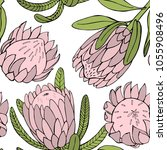 hand drawn flowers protea. ... | Shutterstock .eps vector #1055908496