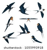 Stock vector barn swallow flying cartoon vector illustration 1055993918