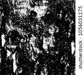 abstract monochrome grunge... | Shutterstock .eps vector #1056031175
