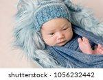 newborn baby lying in trough... | Shutterstock . vector #1056232442