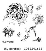 vector illustration of drawing... | Shutterstock .eps vector #1056241688