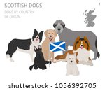 dogs by country of origin.... | Shutterstock .eps vector #1056392705