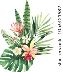 bright watercolor tropical... | Shutterstock . vector #1056421982