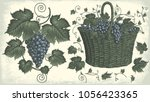 grape cluster and a basket of... | Shutterstock .eps vector #1056423365