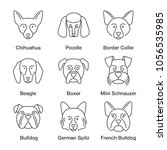 dogs breeds linear icons set.... | Shutterstock .eps vector #1056535985