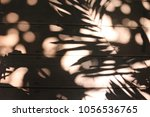 the black and white foliage of... | Shutterstock . vector #1056536765