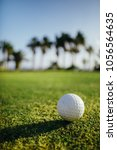golf ball on green grass  palm... | Shutterstock . vector #1056564635