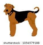 portrait of airedale terrier... | Shutterstock .eps vector #1056579188