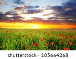 field with green grass and red... | Shutterstock . vector #105664268