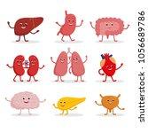 human organs vector cartoon... | Shutterstock .eps vector #1056689786