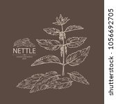nettle  plant  leaves  branch... | Shutterstock .eps vector #1056692705