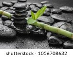 lucky bamboo on the black stones | Shutterstock . vector #1056708632