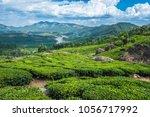 tea plantations in kerala | Shutterstock . vector #1056717992