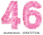 arabic numeral 46  forty six ... | Shutterstock . vector #1056727136