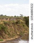 herd of herbivores on the hige... | Shutterstock . vector #1056880322