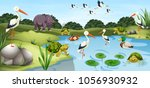 many wild animals in the pond... | Shutterstock .eps vector #1056930932