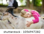 Stock photo cute little girl petting and feeding a goat at petting zoo child playing with a farm animal on 1056947282