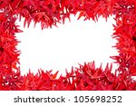 Red Ixora Flower Isolated On...