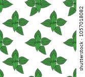 seamless floral pattern  nettle ... | Shutterstock .eps vector #1057018082