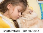 Stock photo a girl and a cat sweetly sleep in bed burying each other 1057073015