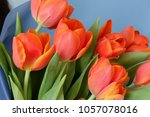 Small photo of Big orange tulips Ad Rem from Holland in bouquet