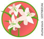 lily religious symbol. white... | Shutterstock .eps vector #1057083146