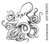 octopus drawn in engraving... | Shutterstock .eps vector #1057282592