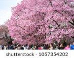 tokyo  japan   march 24th  2018 ... | Shutterstock . vector #1057354202