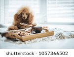 cup with coffee  turk and... | Shutterstock . vector #1057366502