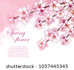 vector corner bouquet with... | Shutterstock .eps vector #1057445345