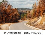 road in the burnt forest | Shutterstock . vector #1057496798